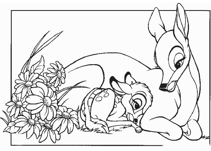 47 best Bambi images on Pinterest | Coloring books, Colouring pages ...