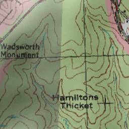 Hamiltons Thicket Topography, Elevation, Lat, Long, Maps & More   Trails.com
