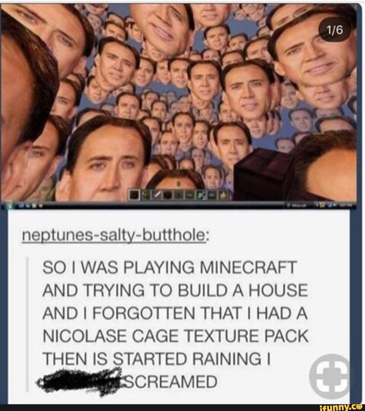 WHY DID YOU INSTALL A NICHOLAS CAVE TEXTURE PACK I'M SCREAMING TOO HELP<<<<< wHY NOT I WANT A NICHOLAS CAGE TEXTURE PACK