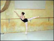 """Wall Mounted Ballet Bars For Dance Studios or Home Use - 6"""" double adjustable poplar $199"""