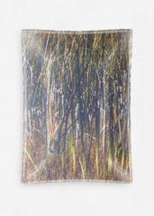 Reeds: Glass tray - oblong - medium $60.00
