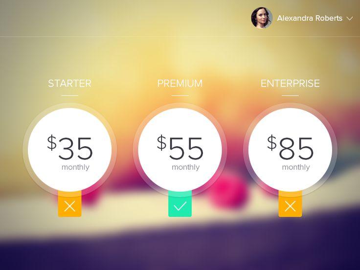 Pricing Page by ZamfirKim