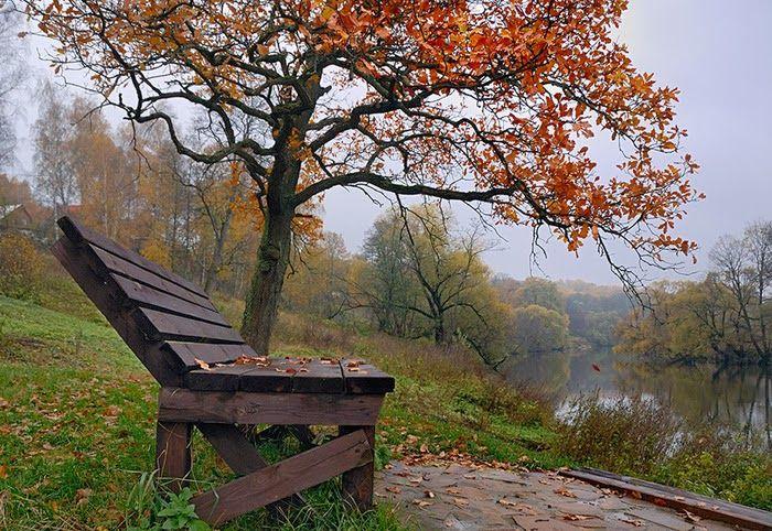 поздняя осень фото: 39 тыс изображений найдено в Яндекс.Картинках