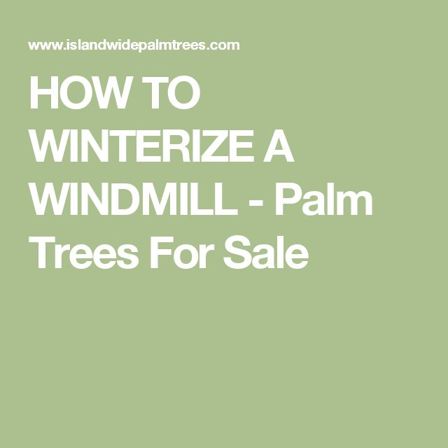 HOW TO WINTERIZE A WINDMILL - Palm Trees For Sale