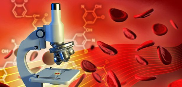 Live Blood Test – The Facts