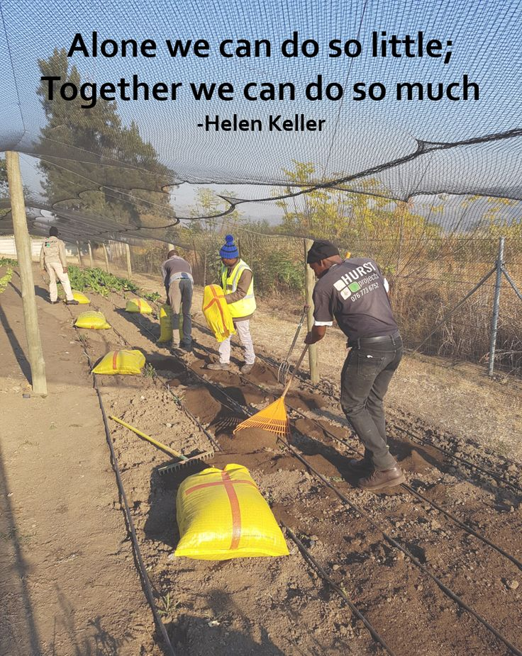 #teamwork #motivation #hurstprojects #landscaping #building #consulting