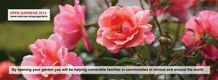 By opening your garden for Open Gardens 2014 you will be helping vulnerable families in Ireland and around the world.  Email Laura to open your garden and get involved lgallagher@gmail.com or see www.redcross.ie/opengardens