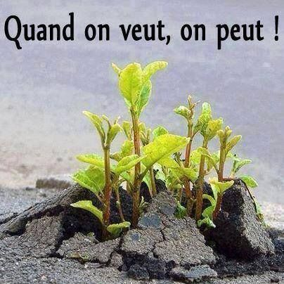 quand on veut on peut - Google Search