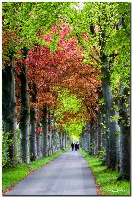 Spring in Groningen, Netherlands