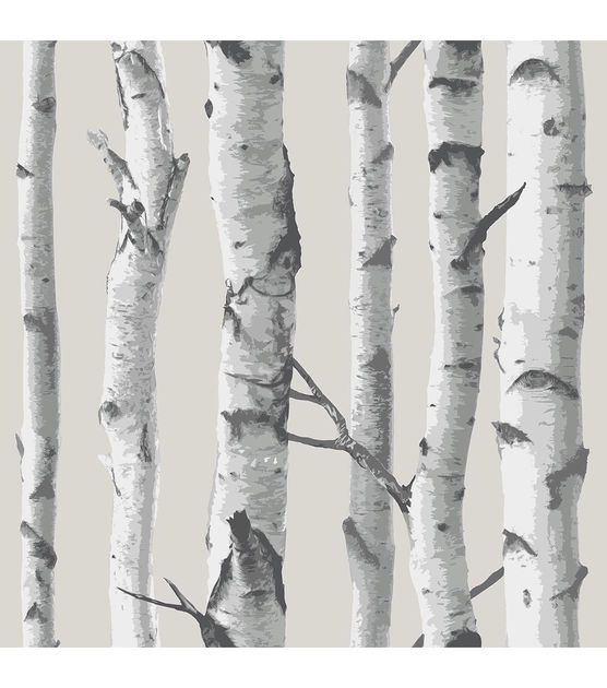 top 25 best birch tree wallpaper ideas on pinterest tree wallpaper forest wallpaper and tree