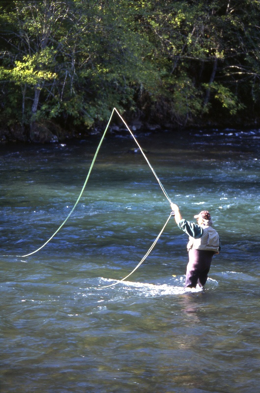 864 best images about oregon rivers lakes on pinterest for Rogue river fishing