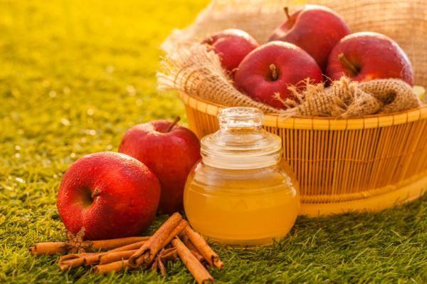 Vinagre de manzana para perros - beneficios y dosis