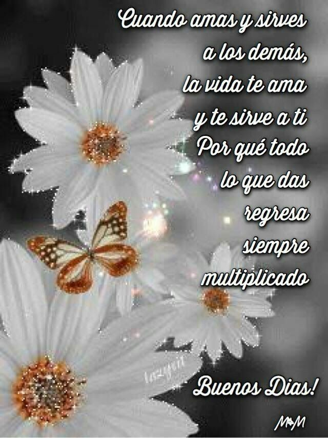 Good Morning In Spanish To A Lady : Best buenos dias images on pinterest buen dia