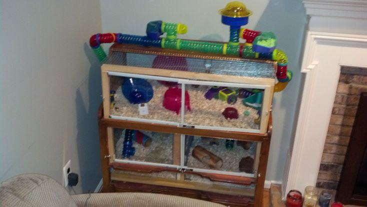 Diy cages with instructions supplies accessories