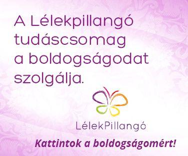 www.lelekpillango.hu