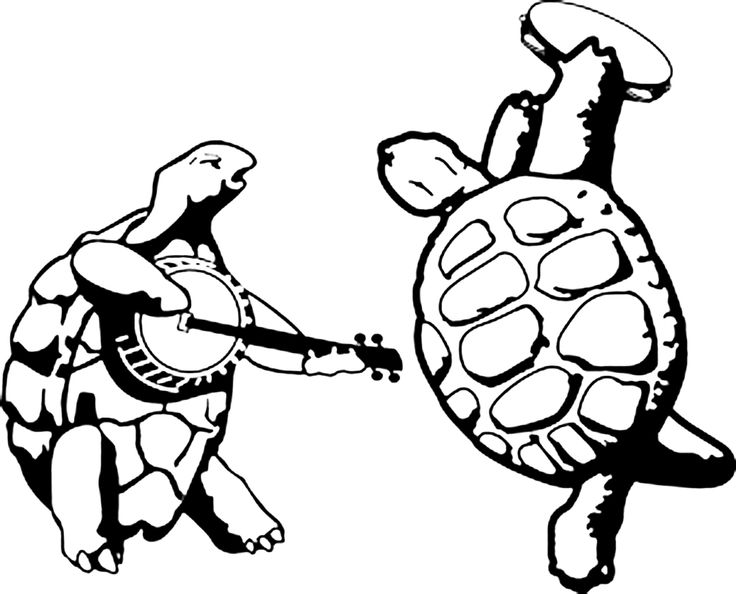 Grateful Dead Dancing Turtles