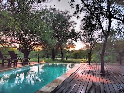 Toro Yaka Bush Lodge, Luxury Safari Lodge in South Africa