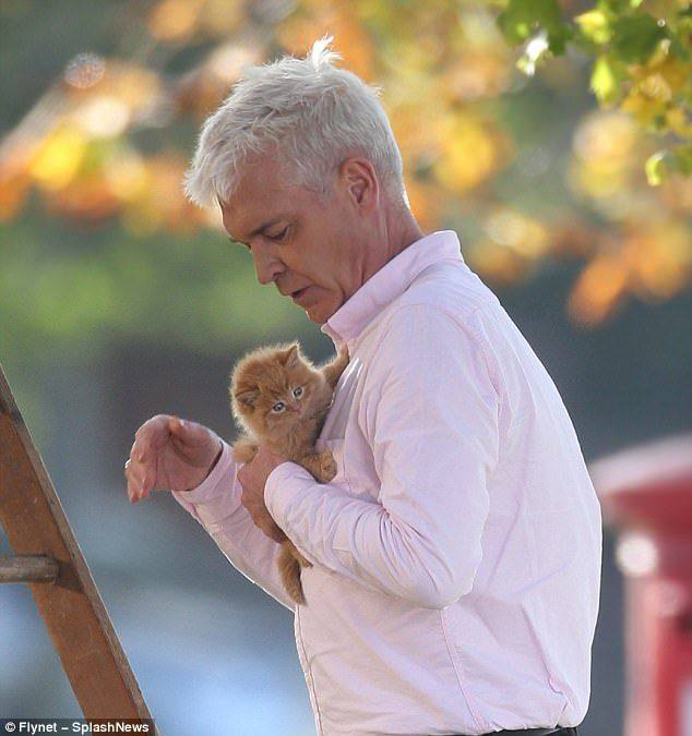 Black #Cosmopolitan Phillip Schofield rescues kitten for We Buy Any Car ad   #Cat, #Ladder, #PhillipSchofield, #Series, #Television, #TelevisionInTheUnitedKingdom, #ThisMorning         He usually spends his weekdays filming This Morning. ButPhillip Schofield swapped the ITV studios for the outdoors as he starred in a We Buy Any Car advert in London on Friday. Throwing himself into the action, the 55-year-old presenter was seen rescuing a cat from a tree as the cameras..