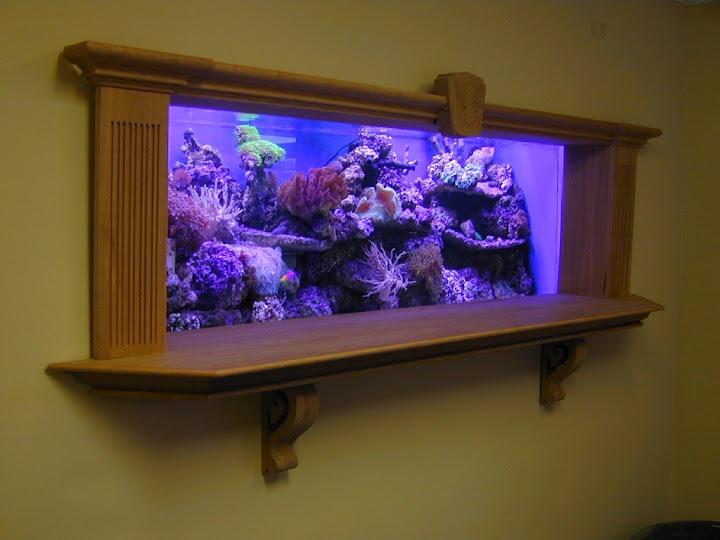 Custom in wall aquarium and bar counter cheers custom for Fish tank bar