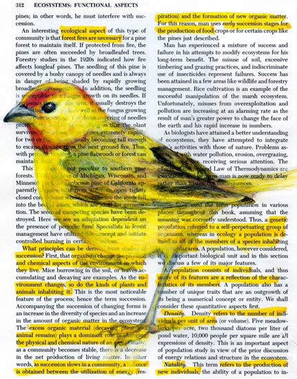 Birds in Books and on Bills by Paula Swisher | the dancing rest