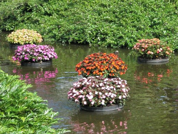 1031 best images about garden on pinterest gardens for Floating plant pots