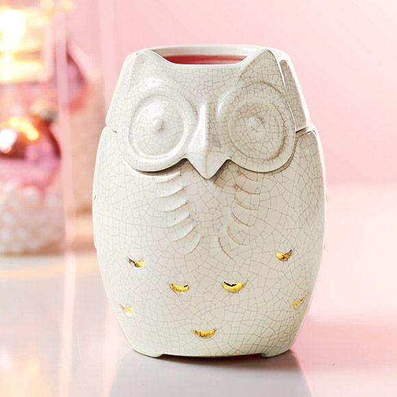 Snowy Owl Melt Warmer
