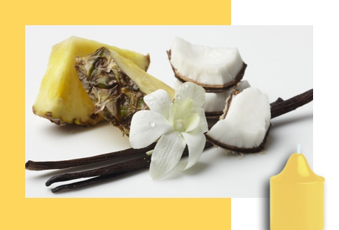 Coconut Colada  A rich, creamy coconut and smooth vanilla freshened with a sunny twist of pineapple is sure to remind you of a perfect day at the beach.