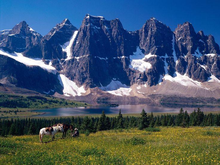 Джаспер парк, альберта, канада, горы, деревья обои, картинки, фото