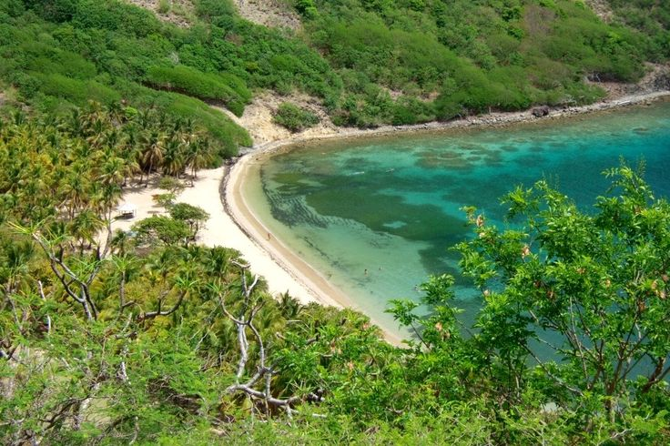Explore The Beauty Of Caribbean: Top 195 Ideas About Guadeloupe On Pinterest