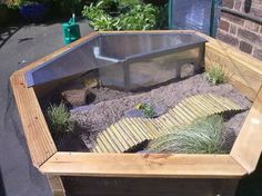 outdoor tortoise enclosure