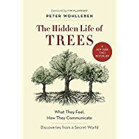 The Hidden Life of Trees: What They Feel, How They Communicate_Discoveries from A Secret World
