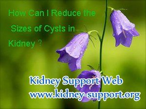 How can i reduce the sizes of cysts in kidney ? As we all know cysts in kidney can be divided into simple ones and complex ones. For the simple ones we can remove them by operation but for those complex ones they are hard to removed, so that demand us to take other measures, that is to reduce the sizes of them, thus to relieve those symptoms caused by enlarged cysts.