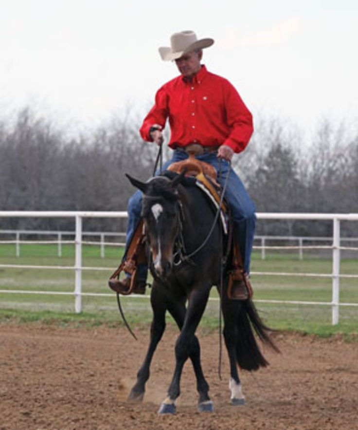 Slick Sidepass. Master the sidepass for  optimal control over your horse's front and hind ends.