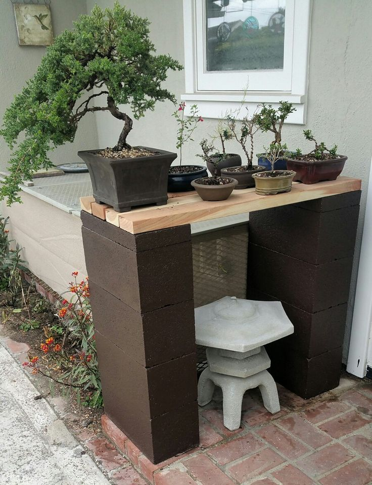 Picture #6 - It's hard to believe (actually not really) I've run out of room on my bonsai display bench. I added this display bench for my smaller pre-bonsai. 5/8/16