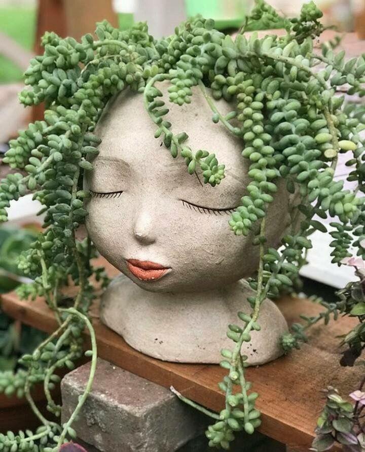 """Meine Mutter hat diese im Haus angebaut. Wir nannten sie """"Peter-Pflanzen"""", weil"""