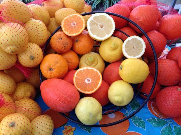 Lindcove Ranch (Exeter, Ca.) Citrus // X Street Farmers Market, Sacramento, Ca.