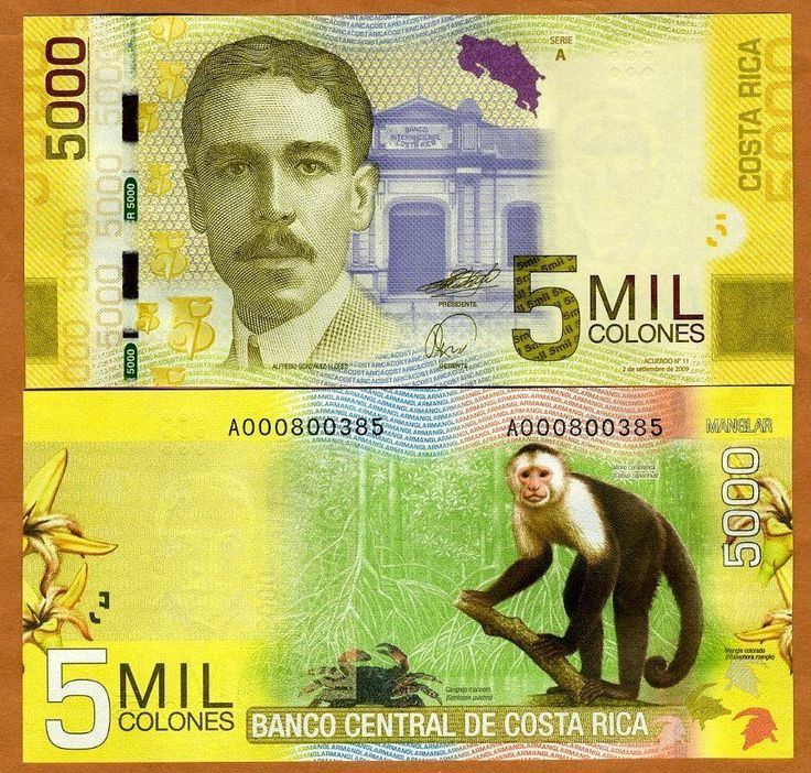 Costa Rica 5000 5 000 2009 2012 P New UNC Monkey | eBay