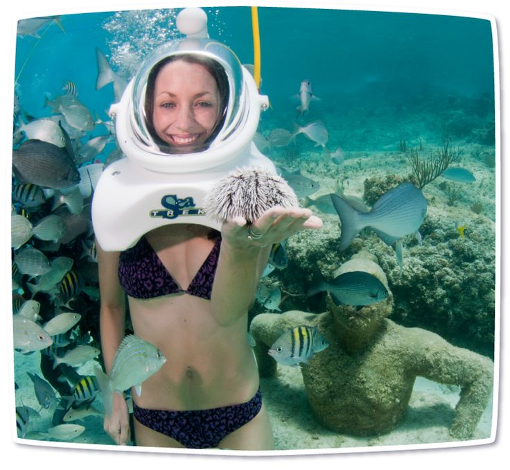Sea TREK Xcaret. Interact with sea life without getting your hair wet!