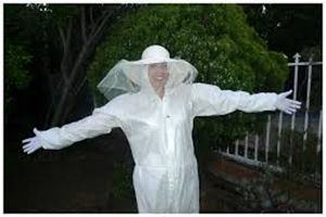 HomeMade Beekeeper Costumes - Beekeepers costume is a head-to-toe suits, designed to protect them from bee stings. Costumes can be made from white suits....
