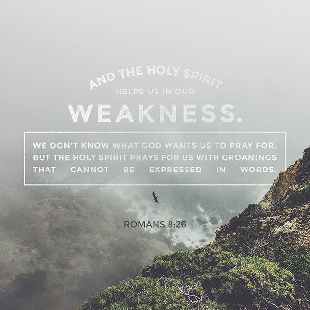 And the Holy Spirit helps us in our weakness. For example, we don't know what God wants us to pray for. But the Holy Spirit prays for us with groanings that cannot be expressed in words. And the Father who knows all hearts knows what the Spirit is saying, for the Spirit pleads for us believers in harmony with God's own will. ‭‭Romans‬ ‭8:26-27‬‬