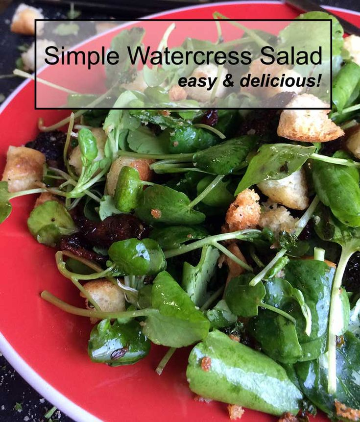simple watercress salad that is fast and easy to make!