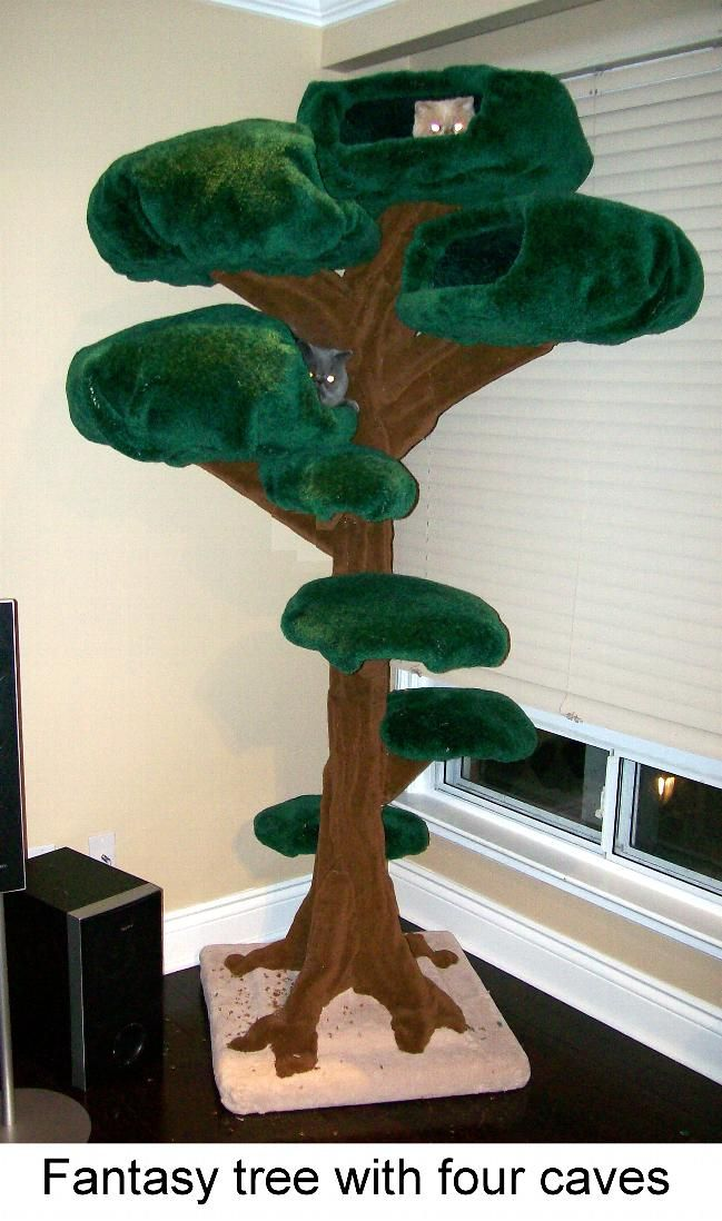 A tree house for your cats!! Love this!