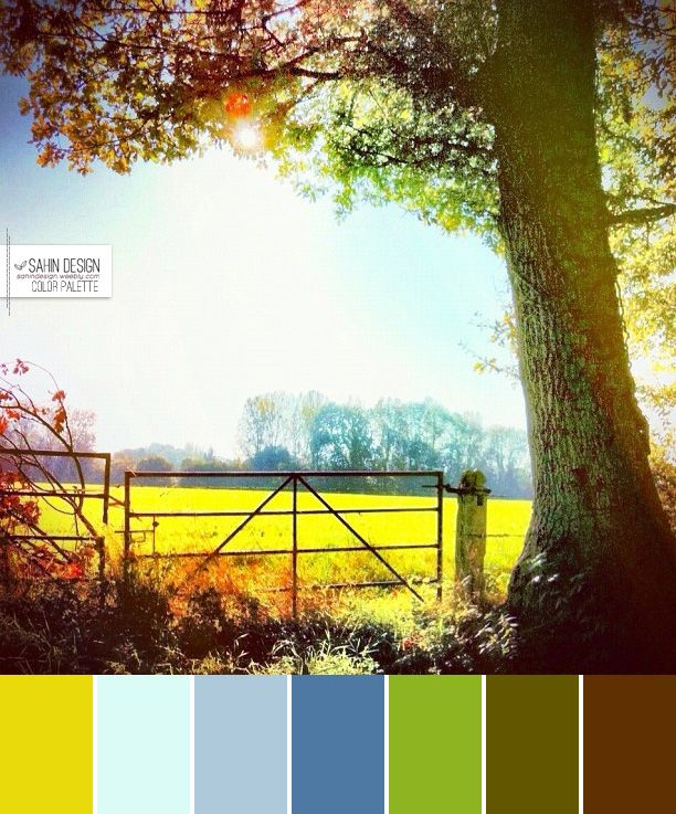 sahindesign-colorpalette