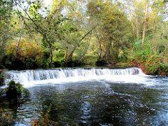 Gravito aude-by Joao Viola (pintor joao viola) Tags: nature water forest river stream moutain pedrgogrande ribeiradepera joaoviola