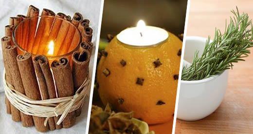 Gli aromi di alcune piante hanno grandissimi poteri terapeutici. In questo articolo ti elenchiamo i [Leggi Tutto...]