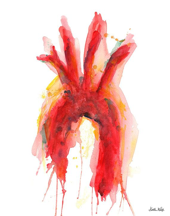 Aorta Watercolor Art Print Vascular Watercolor Art by LyonRoad