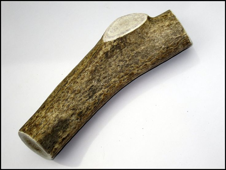 Elk Antler Dog Chews - Extra Large - Premium Grade A Quality Natural Shed Whole Elk Antlers For Dogs - Made in the USA - Hand Picked for Jim Hodges Dog Training - Satisfaction Guaranteed - Safe, Healthy, Nutritious, Organic, Long Lasting Treat Alternative To Dog Chew Toys, Treats, Snack or Bones - XL Thick Antlers for Large and extra Large Dogs *** Be sure to check out this awesome product.