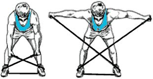 exercice avec elastique pour muscler le dos