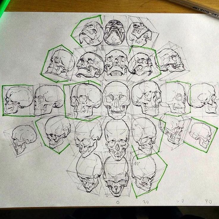 "Out of Step Books Publishing 在 Instagram 上发布:""Loving this #skull #sketch practice sheet from @mathiaszamecki who is an awesome concept artist & illustrator! Be sure to check out the excellent work that Mathias creates on his page and website...and if you love #skulls as much as we do, our 400 page 'Excavate' book features TONS of them! www.OOSBooks.com"""
