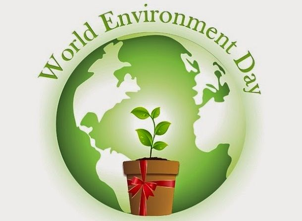 It's World Environment Day! Celebrate by getting behind the wheel of a used Toyota hybrid!  http://blog.toyotaofnorthcharlotte.com/2014/celebrate-world-environment-day-used-toyota-hybrid-charlotte/